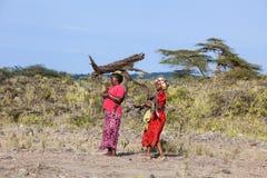 Femmes africaines portant la maison de bois de chauffage Images libres de droits