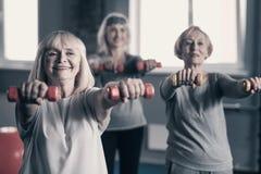 Femmes agées effectuant une séance d'entraînement avec des haltères Photo libre de droits