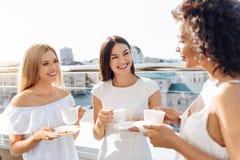 Femmes attirantes gaies ayant le thé ensemble Images libres de droits