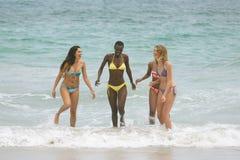 Femmes avec le bikini appréciant sur la plage photo libre de droits