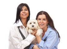 Femmes avec le crabot Image stock