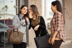 Femmes bavardant entre l'un l'autre Images libres de droits