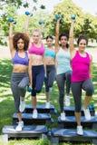 Femmes déterminées faisant l'aérobic d'étape en parc Photo stock