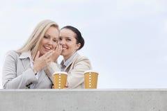 Femmes d'affaires heureuses avec les tasses de café jetables partageant des secrets contre le ciel clair Photos stock