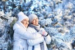 Femmes dans des vêtements d'hiver posant dehors Images stock