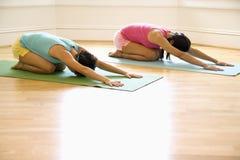 Femmes dans la séance d'entraînement de yoga Image libre de droits