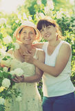 Femmes dans le plan de Roseum Image libre de droits