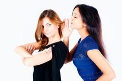 Femmes de bavardage Image stock