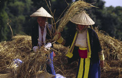 Femmes de Hmong   Photo libre de droits