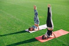 Femmes de yoga pratiquant sa force et équilibre Images libres de droits