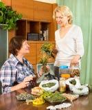 Femmes discutant les propriétés des herbes Photographie stock