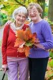 Femmes heureuses de Moyen Âge tenant Autumn Leaves Photos libres de droits