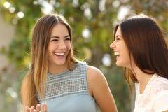 Femmes heureuses parlant et riant Images stock