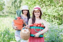 Femmes heureux avec la moisson de légumes Photo libre de droits