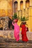 Femmes locales portant des pots avec des usines sur leurs têtes chez Amber Fo Photos libres de droits