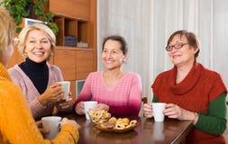 Femmes mûres buvant du thé Photos stock