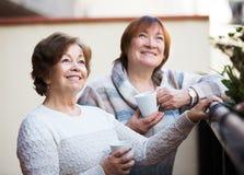 Femmes mûres parlant au patio Photographie stock libre de droits