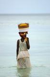 Femmes pêchant dans le mosambique Photographie stock libre de droits