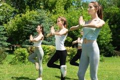 Femmes positives pratiquant l'aérobic Image stock
