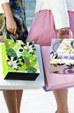 Femmes retenant des sacs à provisions Image libre de droits