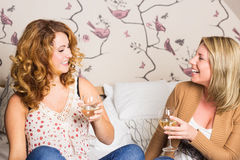 Femmes riantes faisant tinter des verres Images stock