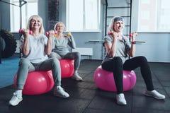 Femmes sportives enthousiastes sur des boules de forme physique soulevant des haltères Image stock