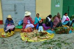 Femmes vendant la fleur dans Caraz, Pérou Photos stock