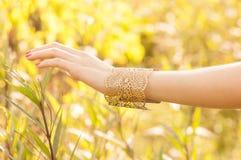 Femmina con i braccialetti Immagine Stock Libera da Diritti