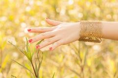 Femmina con i braccialetti Fotografie Stock