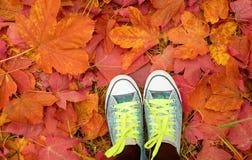 Femmina con i keds che stanno nelle foglie Immagini Stock