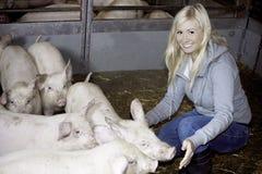Femmina con i porcellini Immagini Stock Libere da Diritti