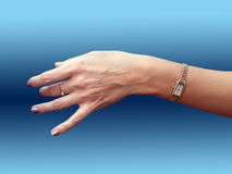 Femmina della mano con le ore Immagine Stock