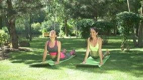 Femmine di forma fisica che risolvono sulle stuoie di yoga in natura
