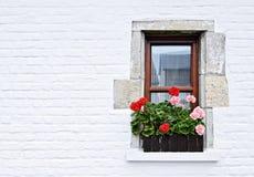 Fenêtre admirablement disposée Photo libre de droits