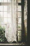 Fenêtre arrière Image stock