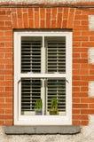 Fenêtre avec des abat-jour et des pots de fleur Images libres de droits