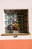 Fenêtre avec des décorations de Noël Photographie stock