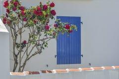 Fenêtre avec les volets bleus, fleurs de roses Photographie stock