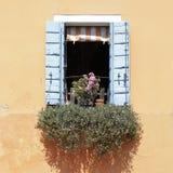 Fenêtre avec les volets en bois bleus Photos stock