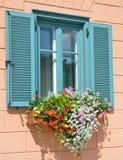 Fenêtre avec un abat-jour et des fleurs du soleil Photo libre de droits