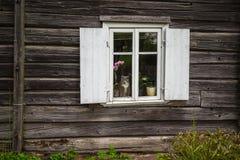 Fenêtre avec un chat Images stock