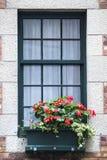 Fenêtre colorée avec des fleurs photo libre de droits