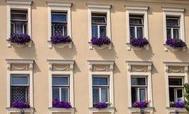 Fenêtre décorée de la vieille maison de patricien de fleurs, Jihlava, République Tchèque Image stock