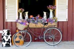Fenêtre décorée des fleurs dans des cruches et la bicyclette intéressante Photo libre de droits