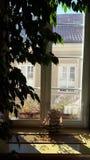 Fenêtre d'hôtel avec le filon-couche de fenêtre Photos stock