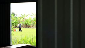 Fenêtre d'un cadre en bois abandonné de hutte la vue à un gisement luxuriant vert de riz tôt avec des agriculteurs photo stock