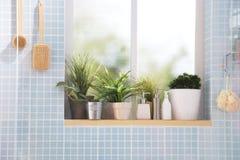 Fenêtre d'une salle de bains Photographie stock libre de droits