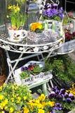 Fenêtre de boutique avec des fleurs Photo stock