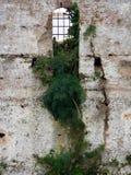 Fenêtre de château Photos stock