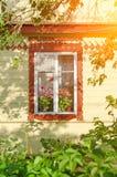 Fenêtre de façade avec des fleurs Photos stock